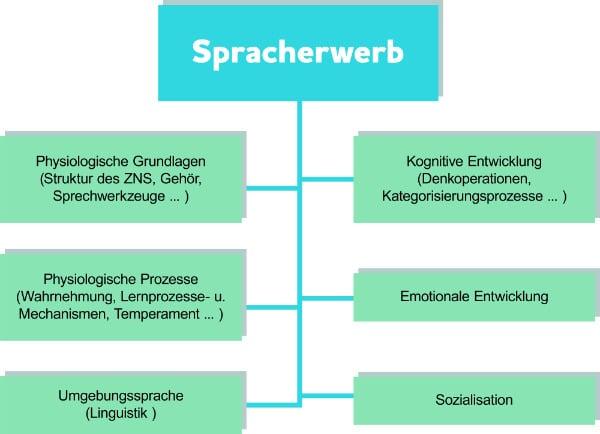 Kriterien für Nachhilfe Englisch in der Grundschule