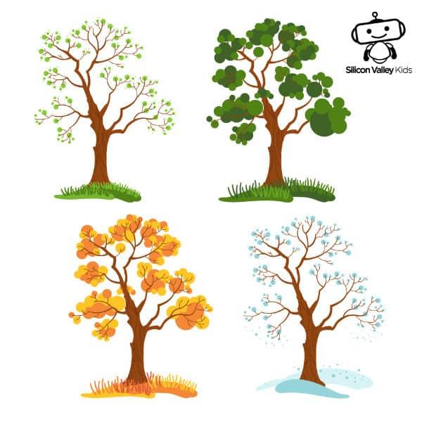 Jahreszeiten in der Grundschule: Die Veränderung des Baums