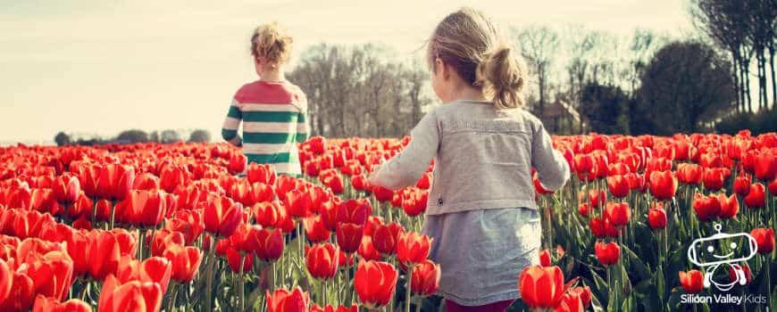 Frühling für Kinder einfach erklärt