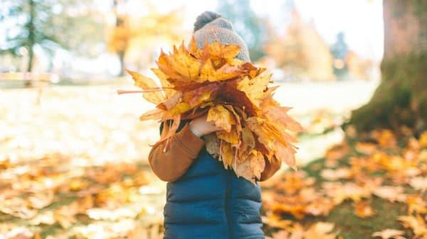 Herbstferien: Spielen mit Blättern