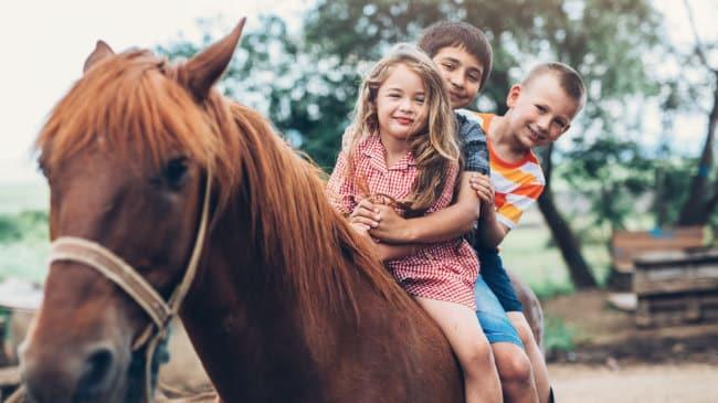 Kindergeburtstag Bauernhof - Aktivitäten