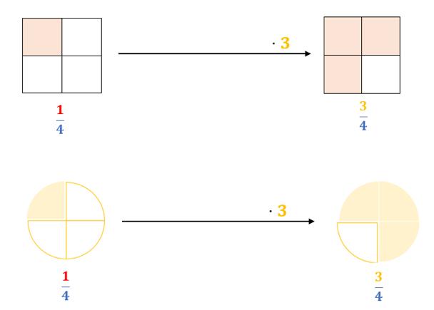 Multiplikation von Brüchen mit ganzer Zahl