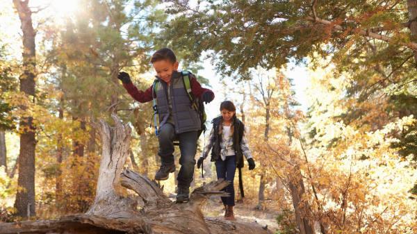 Schnitzeljagd für Kinder im Wald -Spaß