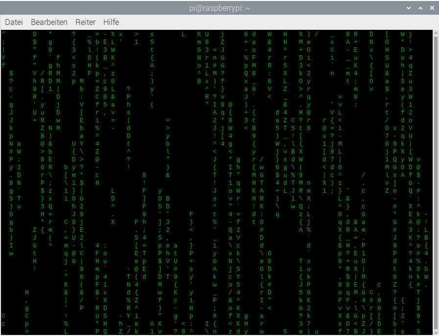 Die Matrix im Raspberry Pi Terminal
